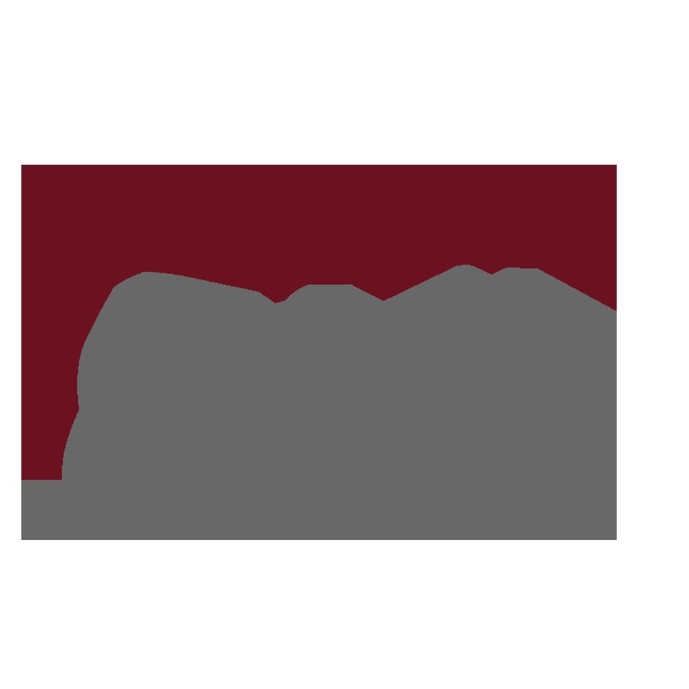GMI logotyp